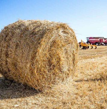 комбайны, сельское хозяйство