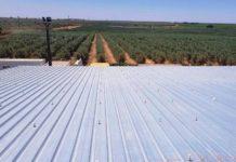 Завод оливкового масла в Испании