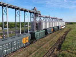 Перевозка зерна жд транспортом